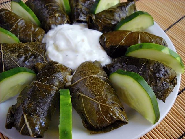 Dolmas / Stuffed Grape Leaves on white plate with sauce and cucumber slices
