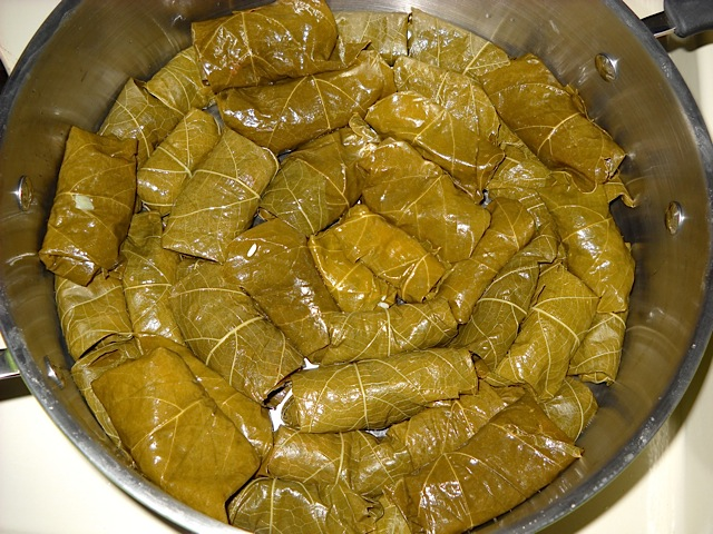 Dolmas in pot ready to cook