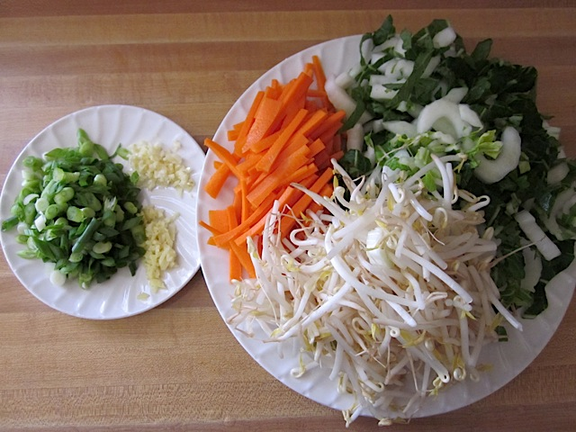 chopped vegetables (green onion, garlic, ginger, bok choy, carrot and bean sprouts) on plate