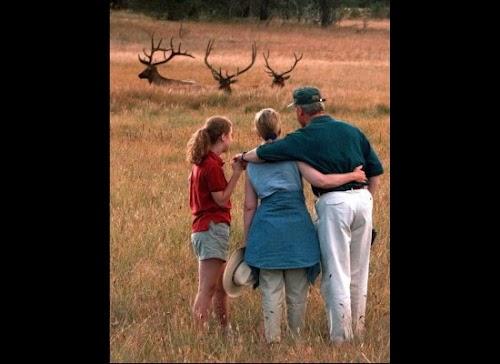 1996年8月12日,克林顿一家在黄石公园度假。.jpg
