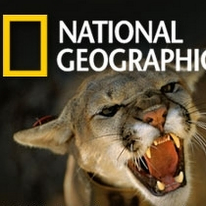 The best photos from National Geographic May 2010.