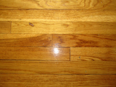 Can You Identify This Hardwood Species Pics