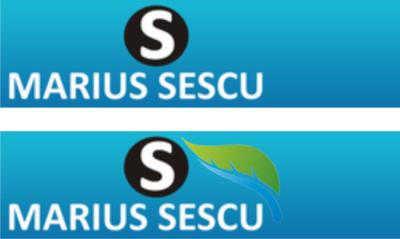 frunza logo Romania