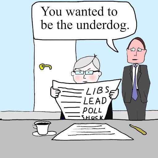 Laberal Liberals Gain Poll Lead Cartoon