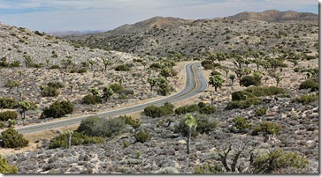 110221_joshua_tree_np_keys_view_rd