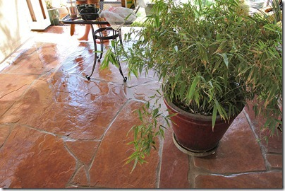 110417_pressure_washed_patio
