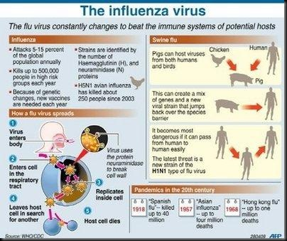 All about Scientist in Micro World: Microbiology: Swine Flu