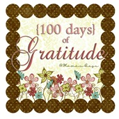 100 days of gratitude tag
