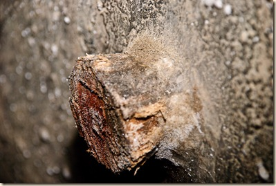 turda-salt-mine-salted-wood-3