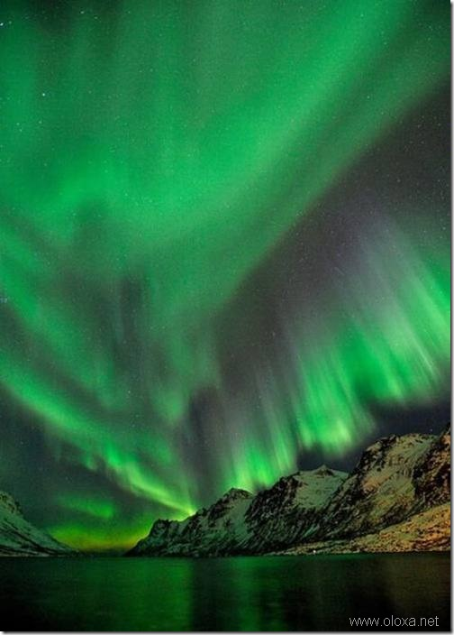 aurora-north-pole-33