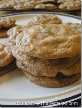 chocolate chip cookies - dairy free 2