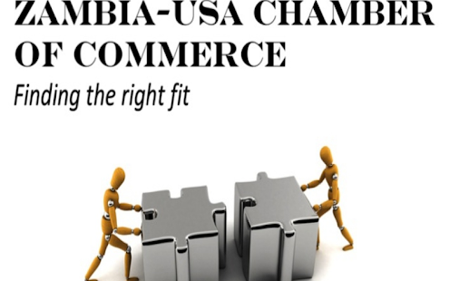 Zambia USA Chamber- screenshot thumbnail