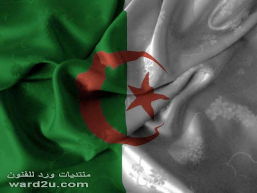 تاريخ علم الجزائر ومراحل تطوره