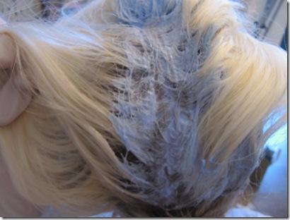 hairbleach 127