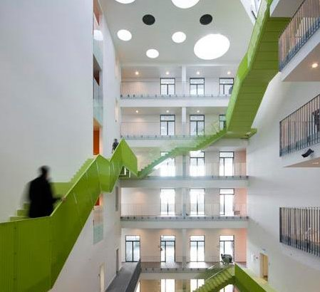 Green innovative ladder