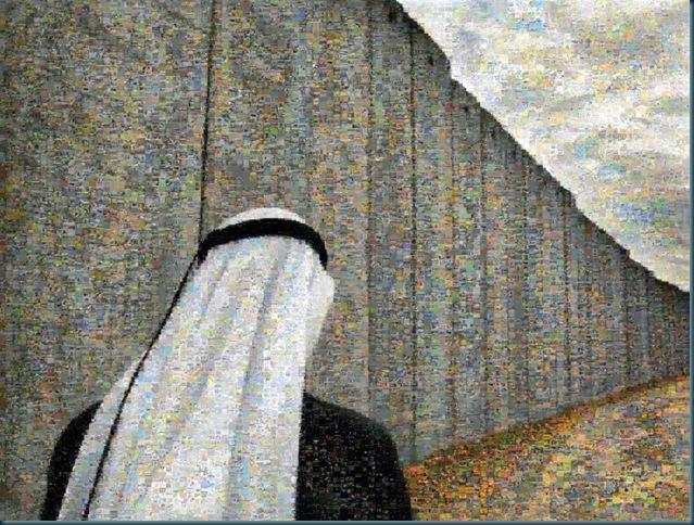 fontcuberta - el mur