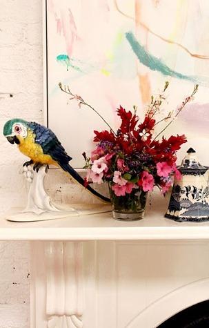 parrot5