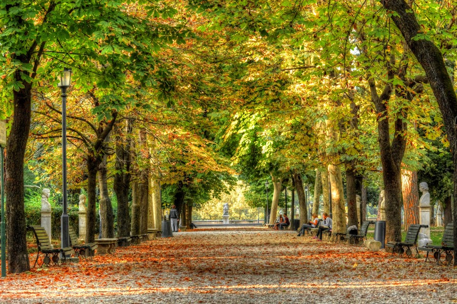 Park  in Rome by Lux Aeterna - City,  Street & Park  City Parks