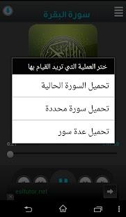 عبد الباسط عبد الصمد - screenshot thumbnail