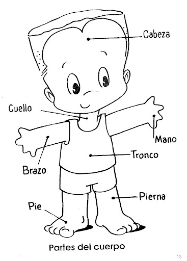 body parts in spanish - free coloring pages | Coloring Pages