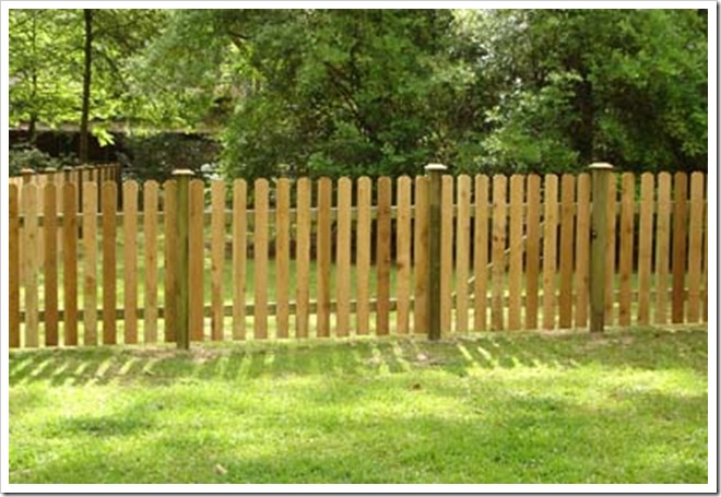 Its A Horvaths Life A Fence For Rileypart One