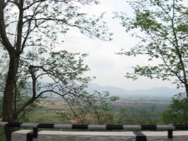 Sri Venkateswara Travels Kadapa Contact Number