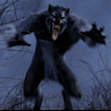 WereWolf Live Wallpaper icon