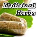 Medicinal Herbs Bible logo