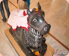nageshwarnandi-raghvann