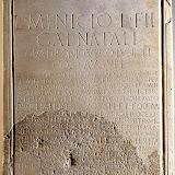 Pedestal Luci Minici.jpg
