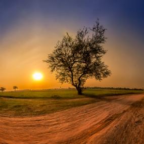 Around by Liquid Lens - Landscapes Prairies, Meadows & Fields (  )