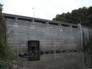 ダム湖より堤体を望む