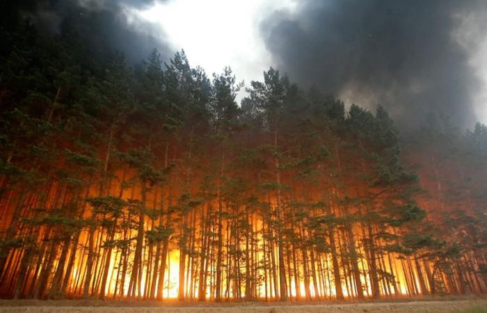 russia-forest-fire (1)