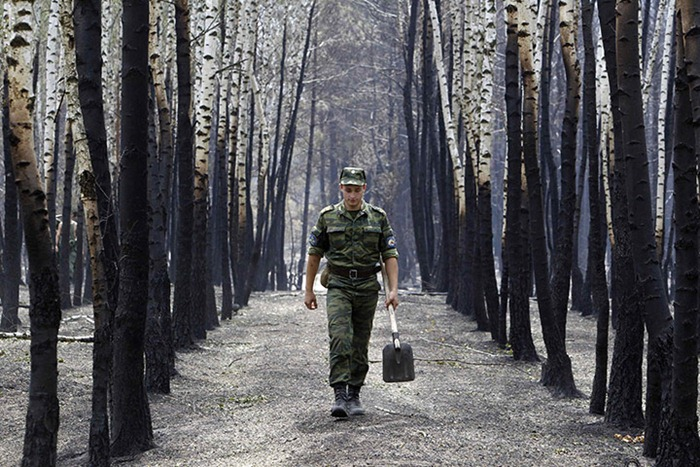 russia-forest-fire (49)