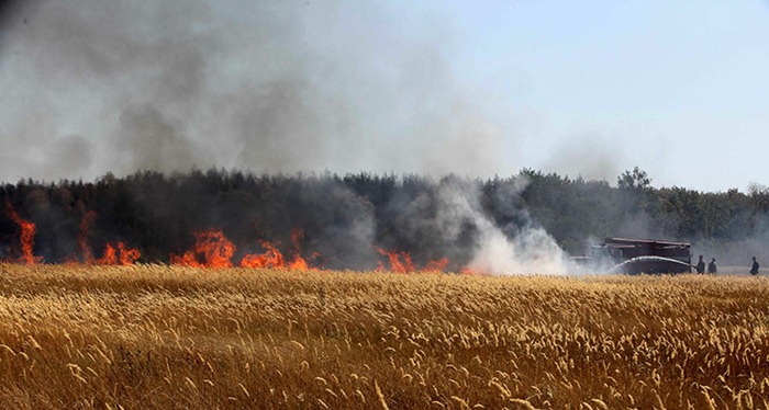 russia-forest-fire (51)