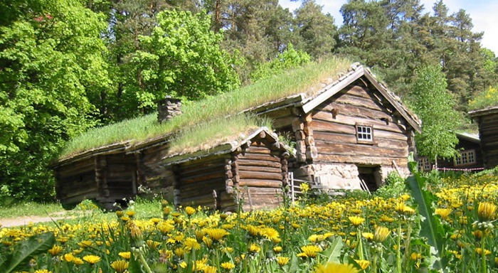 green-roof-norway (13)
