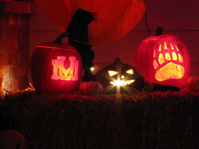 grizfnz wrote my annual pumpkin carvings