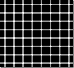 persepsi_ilusi_optis_grid_illusion