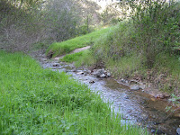 Sunol Regional Wilderness Everytrail