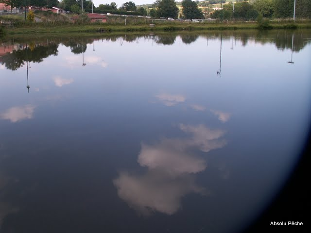 Le noyer photo #39