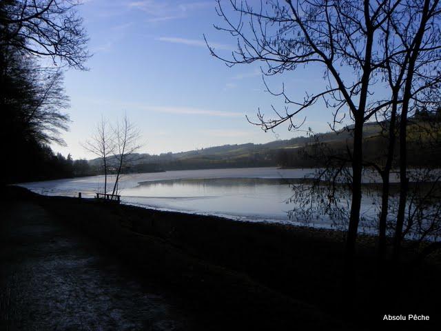 Lac des sapins à Cublize photo #213