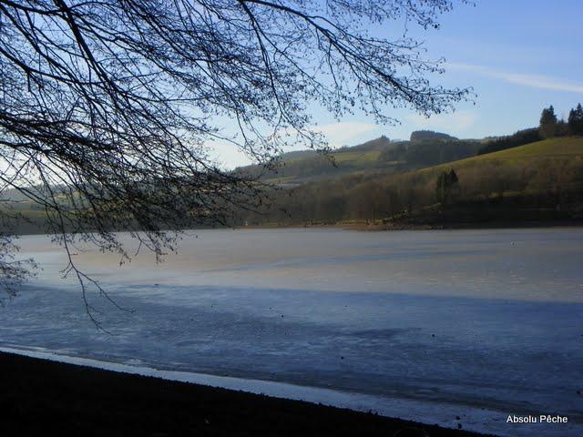 Lac des sapins à Cublize photo #215