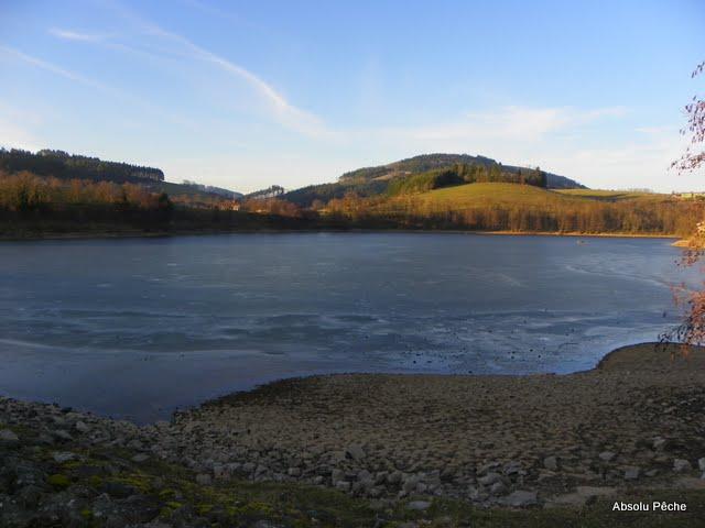 Lac des sapins à Cublize photo #222