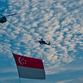 Singapore 49th National Day 2014 by Foo Fok - Public Holidays July 4th ( singapore 49th national day 2014 )