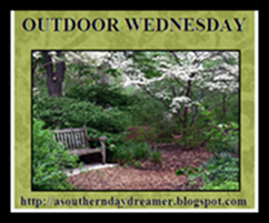 OutdoorWednesdaylogo5454