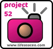 project52button2-300x275