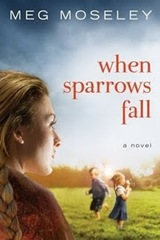 When Sparrows Fall[1]
