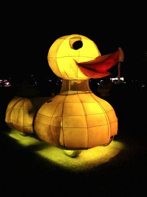 Duck Car