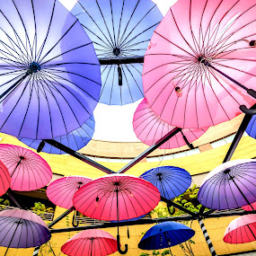 Floating Umbrella by Jijo George - Artistic Objects Other Objects ( sky, building exterior, horizontal, colors, umbrella, parasol, summer, happiness, sunlight, sunbeam, sun, multi colored, colorful, mood factory, vibrant, January, moods, emotions, inspiration,  )