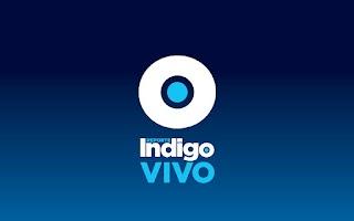 Screenshot of Indigo Vivo